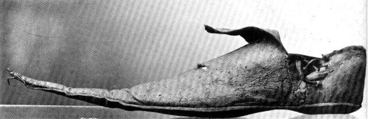 Poulaine leather shoe, c. 15th century, Victoria and Albert Museum, London